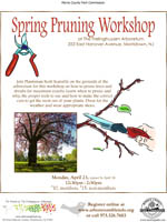 Pruning_Workshop