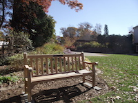 newly_installed_bench-th