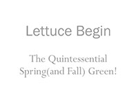 LETTUCE_BEGIN-th