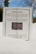 Alpinegarden1-th