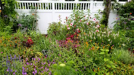 201707__cottage_garden1_by_kmuccillo-th